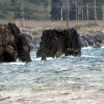 bagnara giugno 2020 resti fortino francese_6