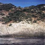 bagnara calabra nel 2000_178