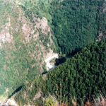 bagnara calabra nel 2000_351