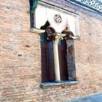 bagnara 1991_41