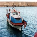 bagnara 1991_60