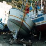 bagnara 1991_61