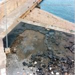 bagnara 1991_63