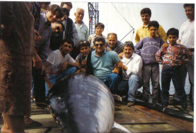 """La cattura di un grosso tonno con l'imbarcazione Libeccio  di Carmelo Savoia """" u kelinu """"  Archivio di Rocco Luppino"""