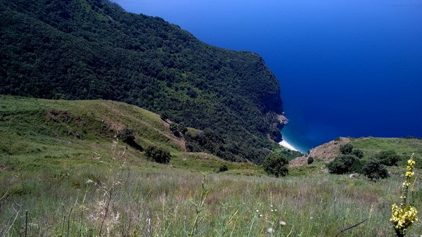 Alla ricerca del verde e del blu passeggiando sulla costiera  Omaggio al paesaggio davanti allo stretto di Messina  foto di Gianni Saffioti