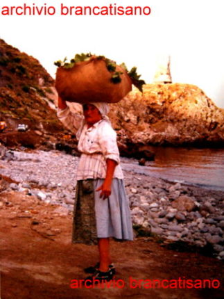 Zibibbu ruci  foto fine anni 70  di Mimmo Brancatisano