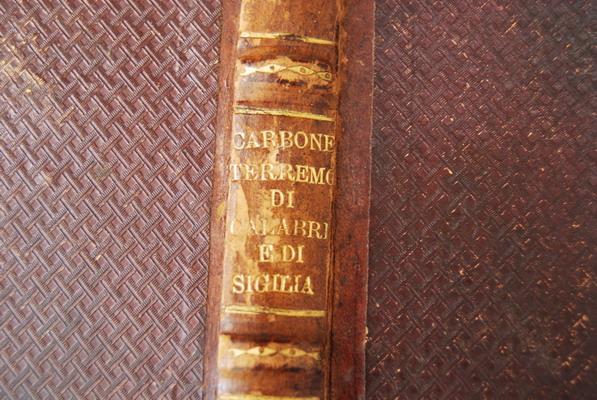 I terremoti di Calabria e di Sicilia nel secolo XVIII - p.1884  di Domenico Carbone Grio