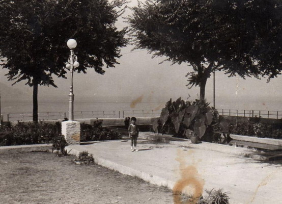 bagnara belvedere 1960